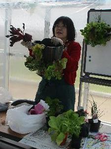 第3回みどりの教室「野菜のハンギング」