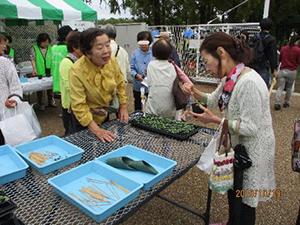 第5回東大阪市グリーンフェスタ ~おもてなしで彩る花園~