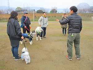 犬のマナー教室